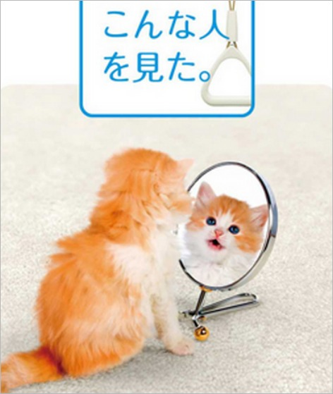 tokyo-subway-poster-cat-selfie