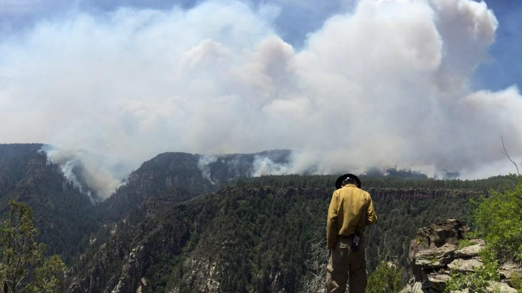 Arizona wildfires 2014