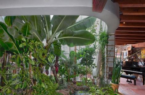 the greenhouse at the Banana Farm