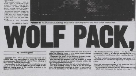 wolfpackCP5