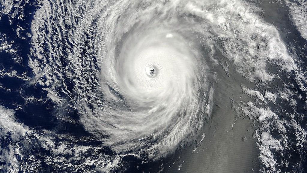 Hurricane Iselle Hawaii