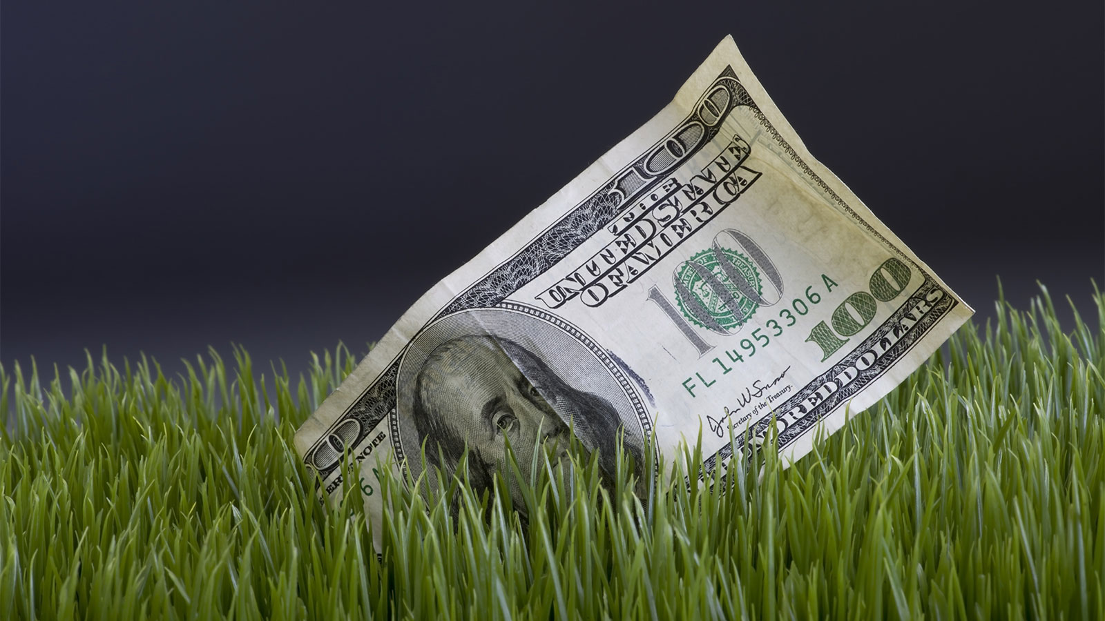 Cash in the grass
