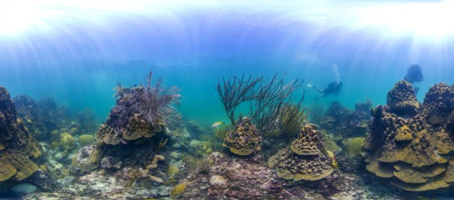 Florida Keys MPA reef