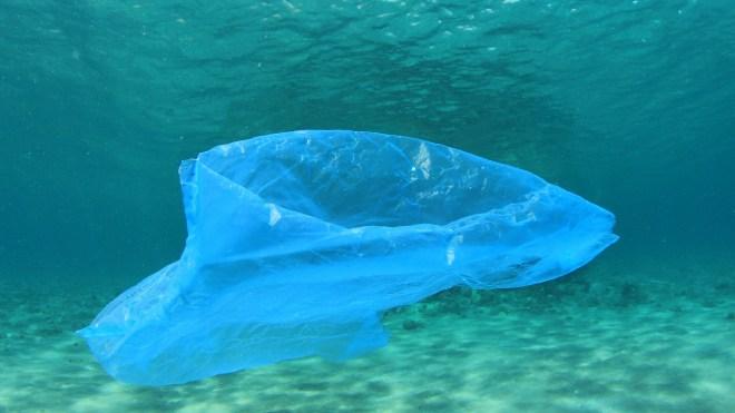 ocean plastic bag
