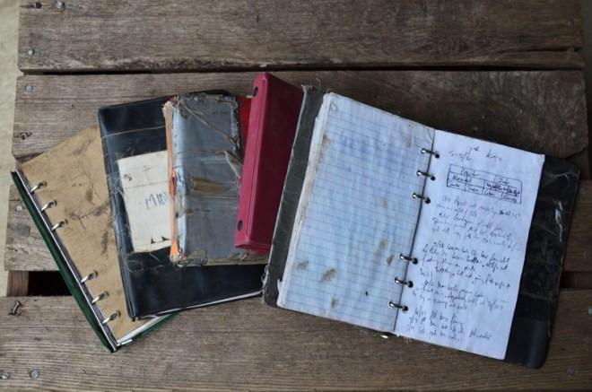Brockman journals