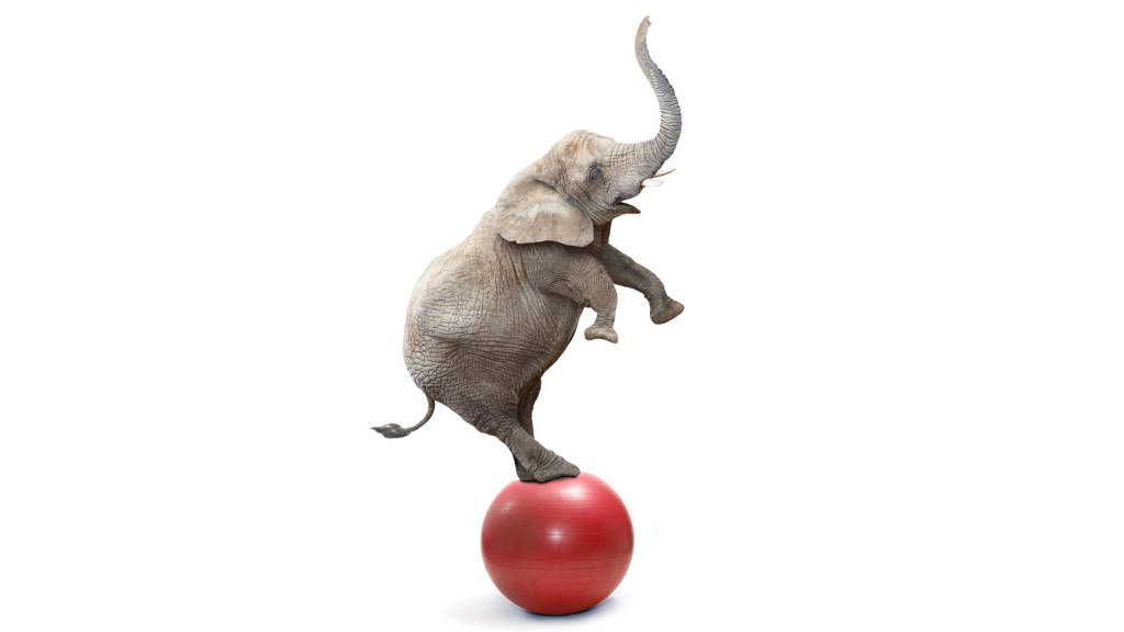 Flailing elephant
