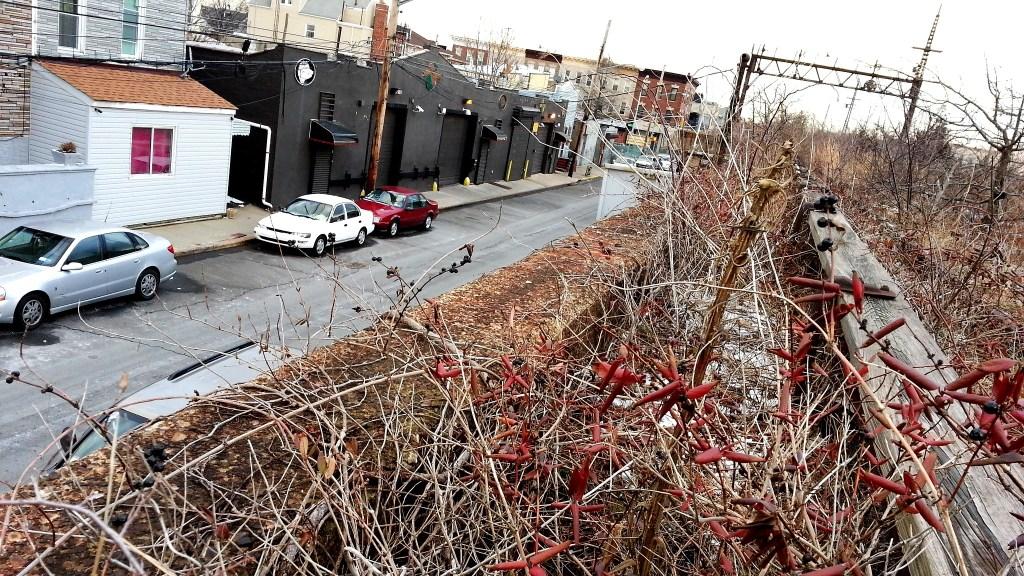 QueensWay park New York