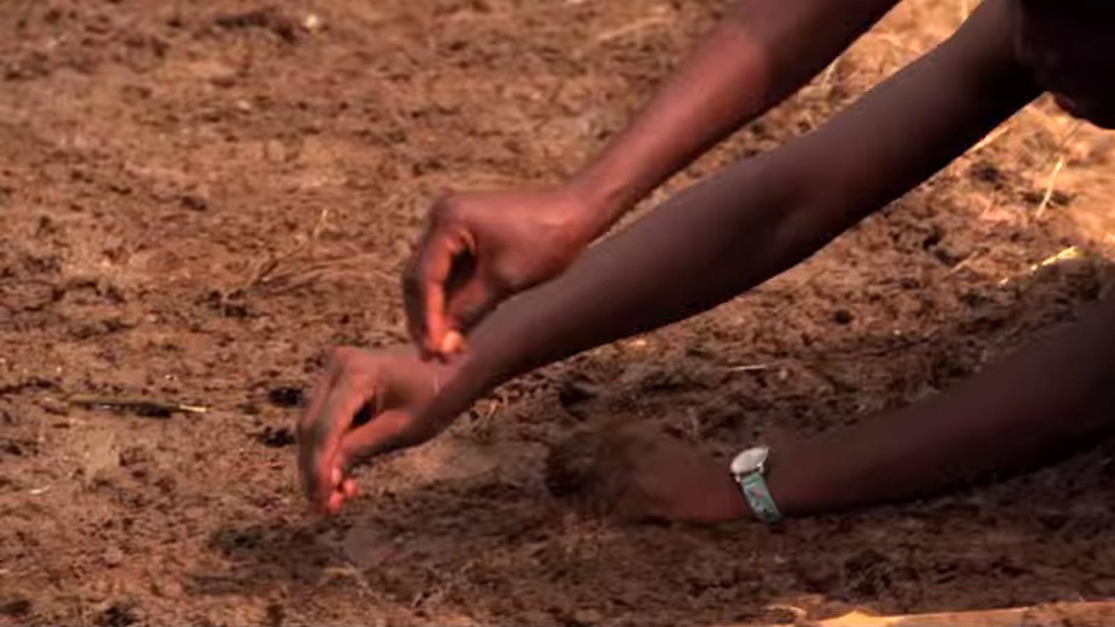 4-H in Africa