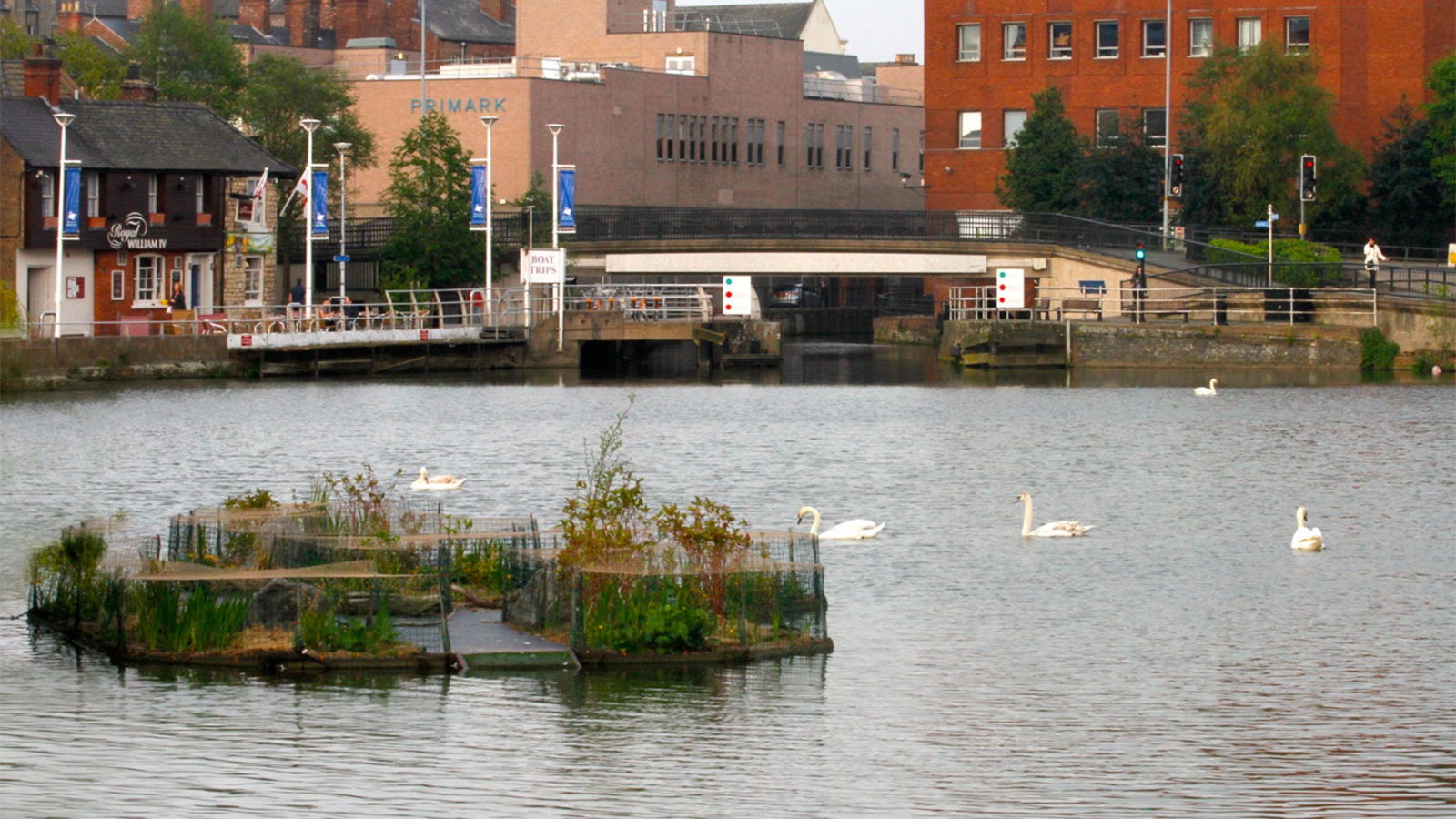 Floating island in Lincoln England