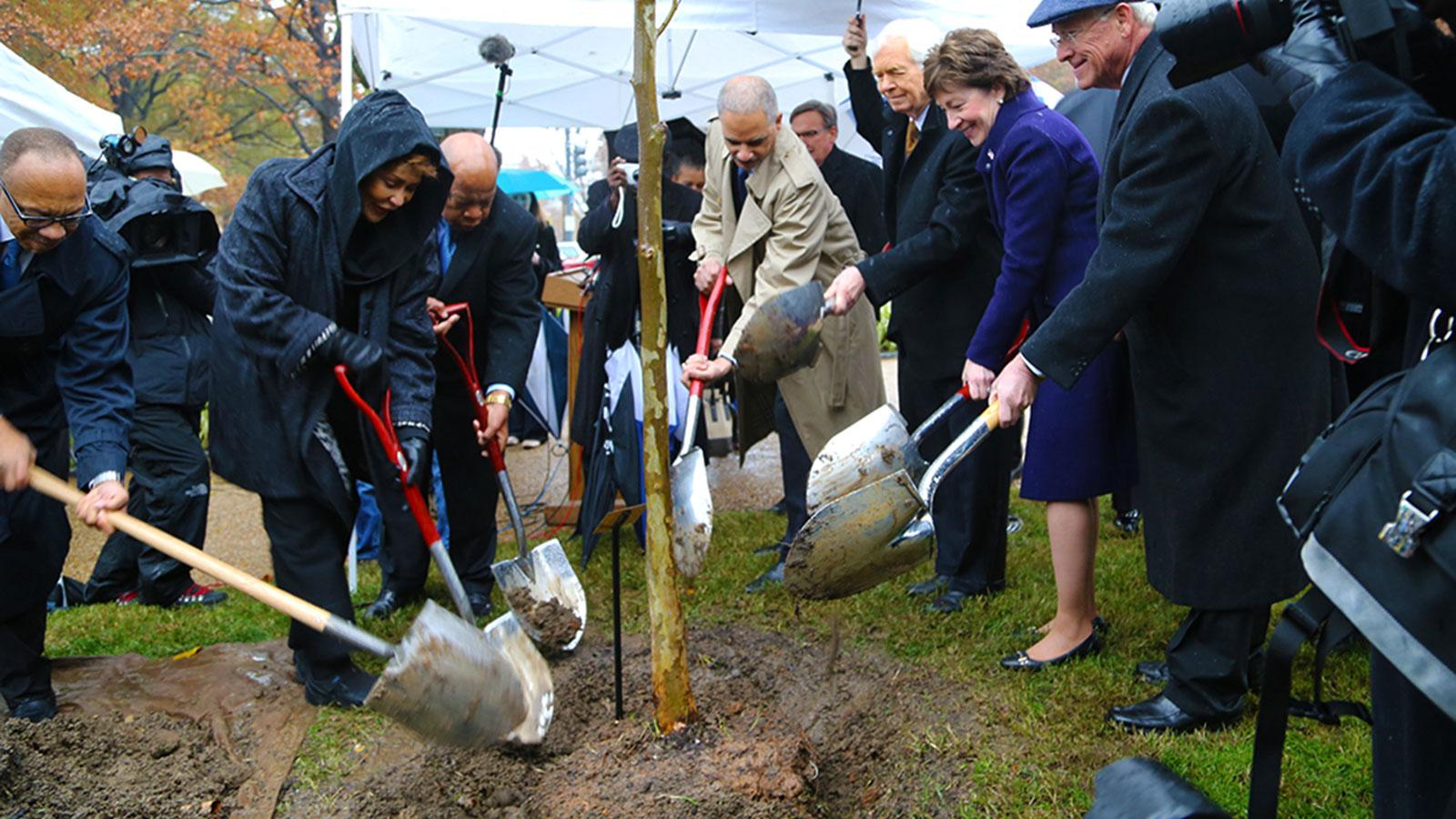 Emmett Till tree planting ceremony