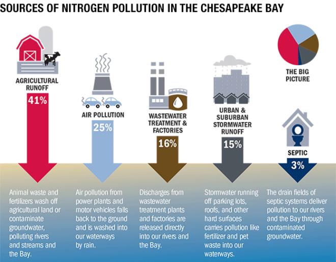 graphic-pollution-sources-nitrogen-695wide-1