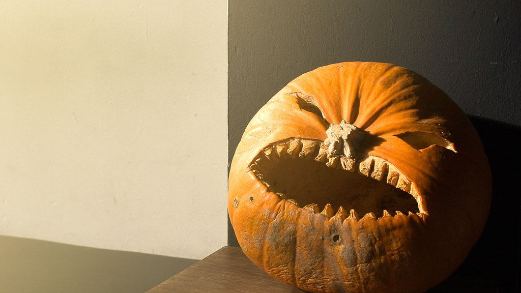 Dehydrated pumpkin