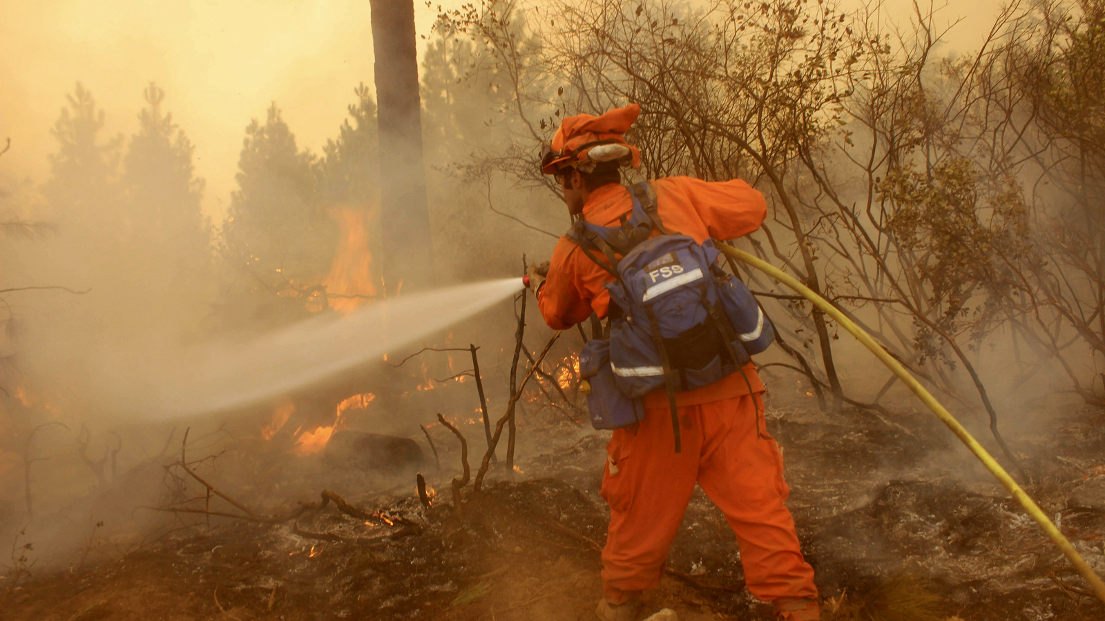 California fire inmate crewman sprays down a hotspot at the Rim Fire.