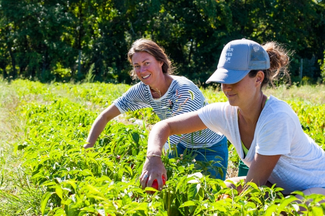Katie and Amanda of Amber Waves Farm