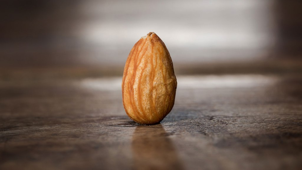 Lone, monumental almond
