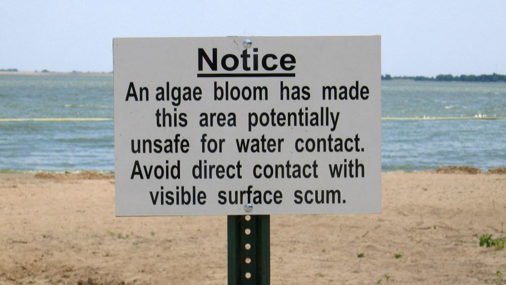 Warning sign in a beach on Lake Marion, Kansas.