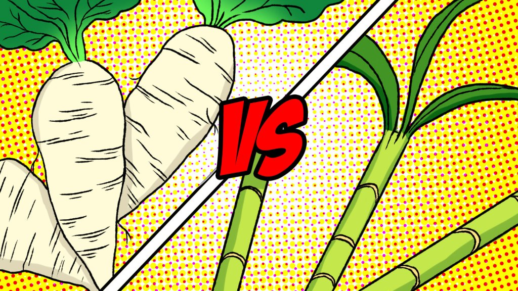 Sugar Beets vs Sugarcane showdown