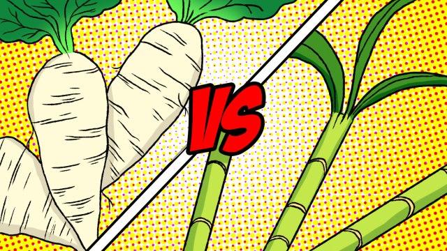 Sugar Beets vs Sugarcane showdown