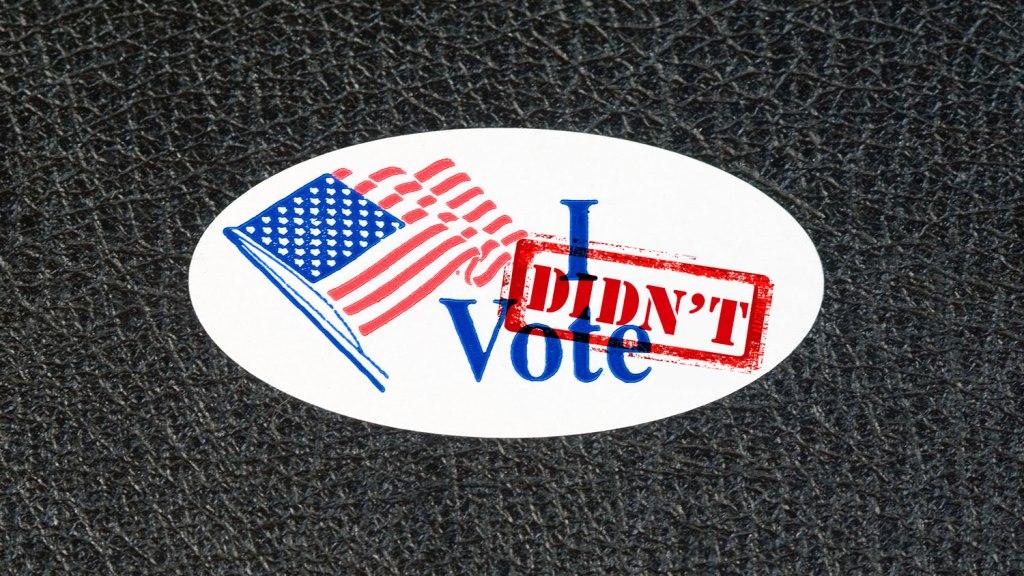 I Didn't Vote