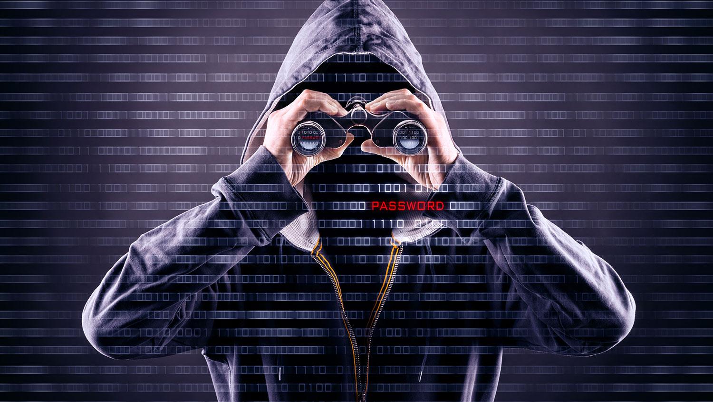 spy in a hoodie