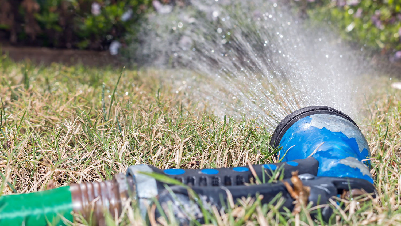 sprinkler and dry grass
