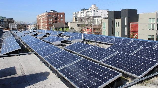 Community Solar Capitol Hill
