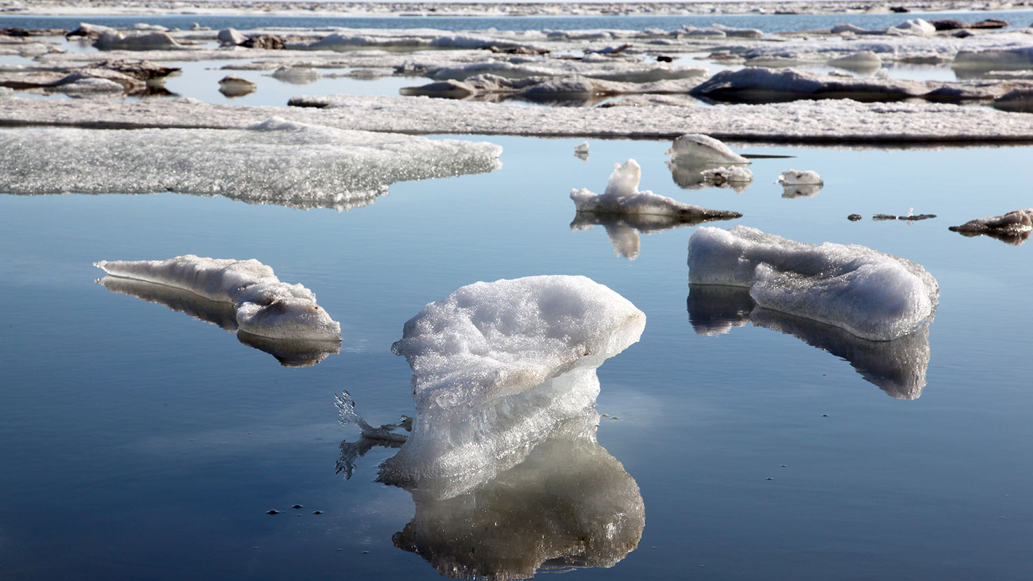 Melting ice bits in the sea