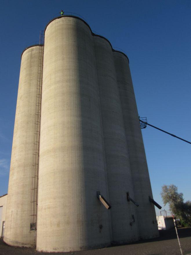 Sam atop a grain silo somewhere on Lind-Ralston Road