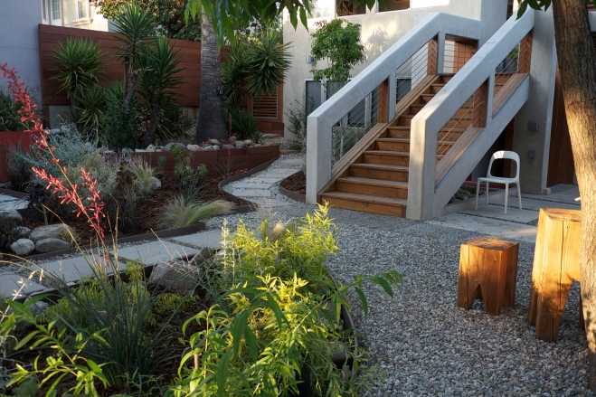 xeriscaped & hardscaped yard