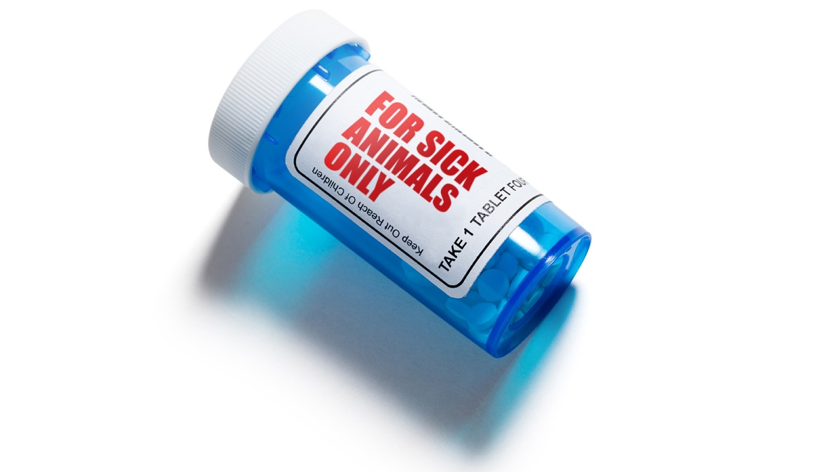 Prescription for sick animals