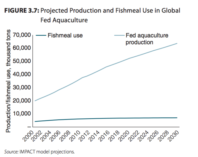 From Fish to 2030