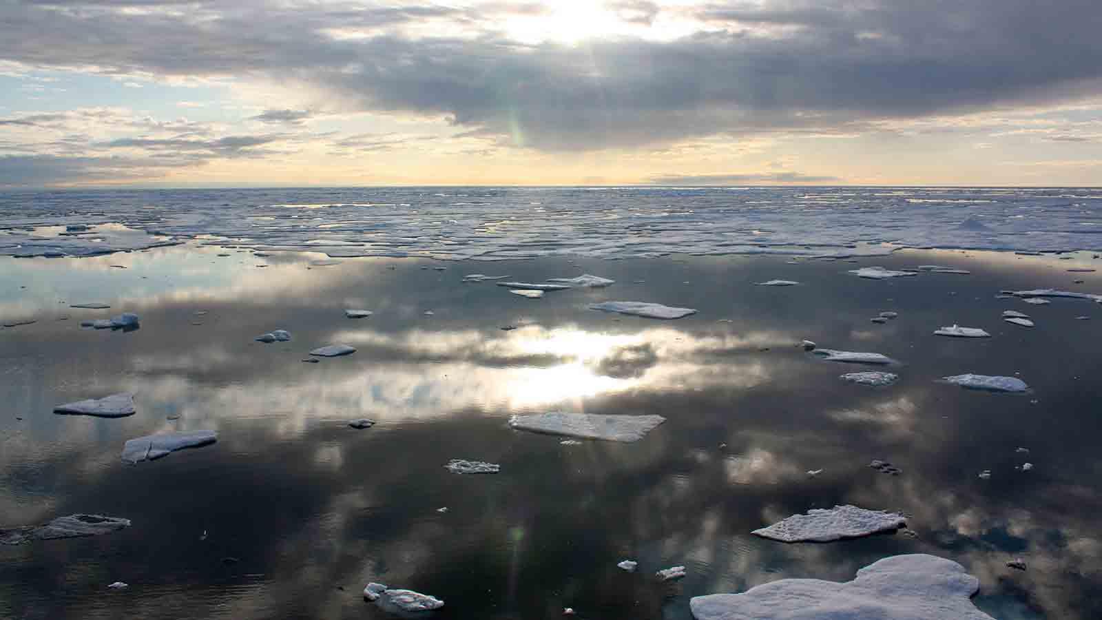 Ice in the Chukchi Sea