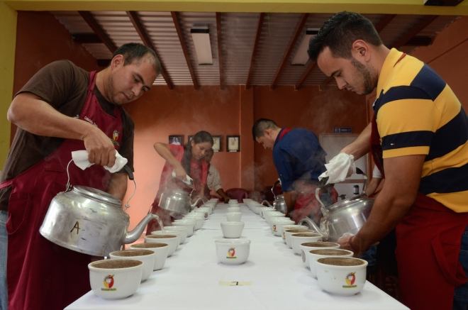 A quality control coffee cupping at the Cocafelol cooperative in Honduras