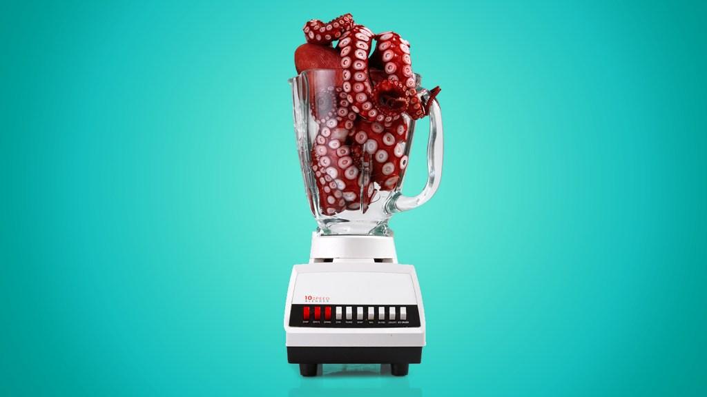 Octopus in a blender
