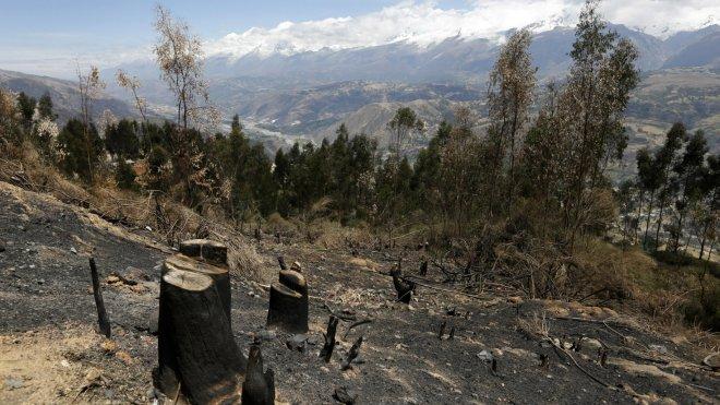 Land cleared in Carhuaz, Peru