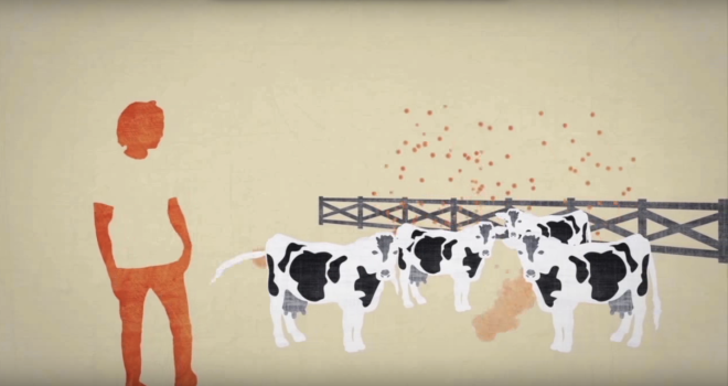 ACE_Alliance_Farting_Cows_Methane