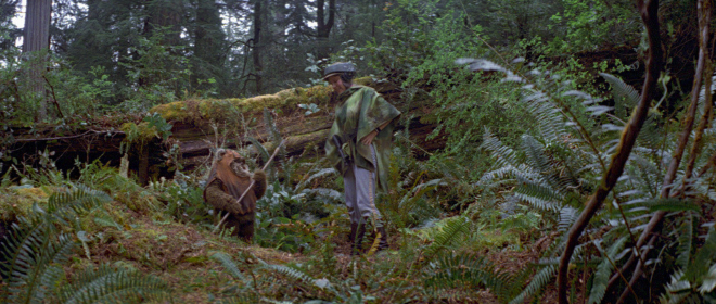 "Princess Leia (Fisher) exchanging some words with an Ewok in ""Return of the Jedi."""