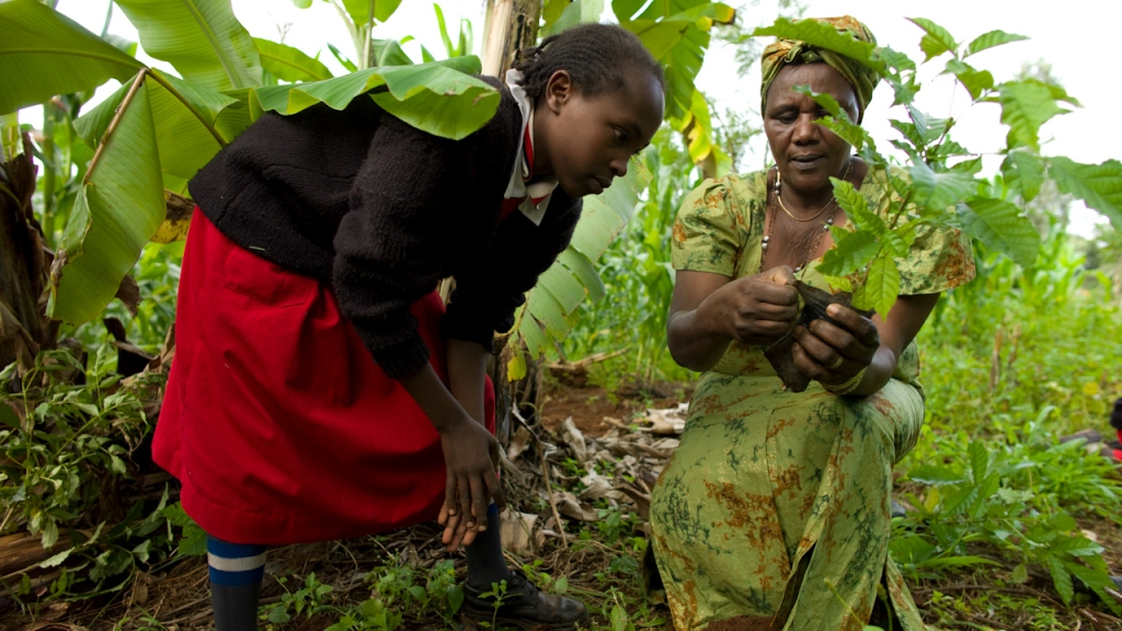 woman and girl planting tree