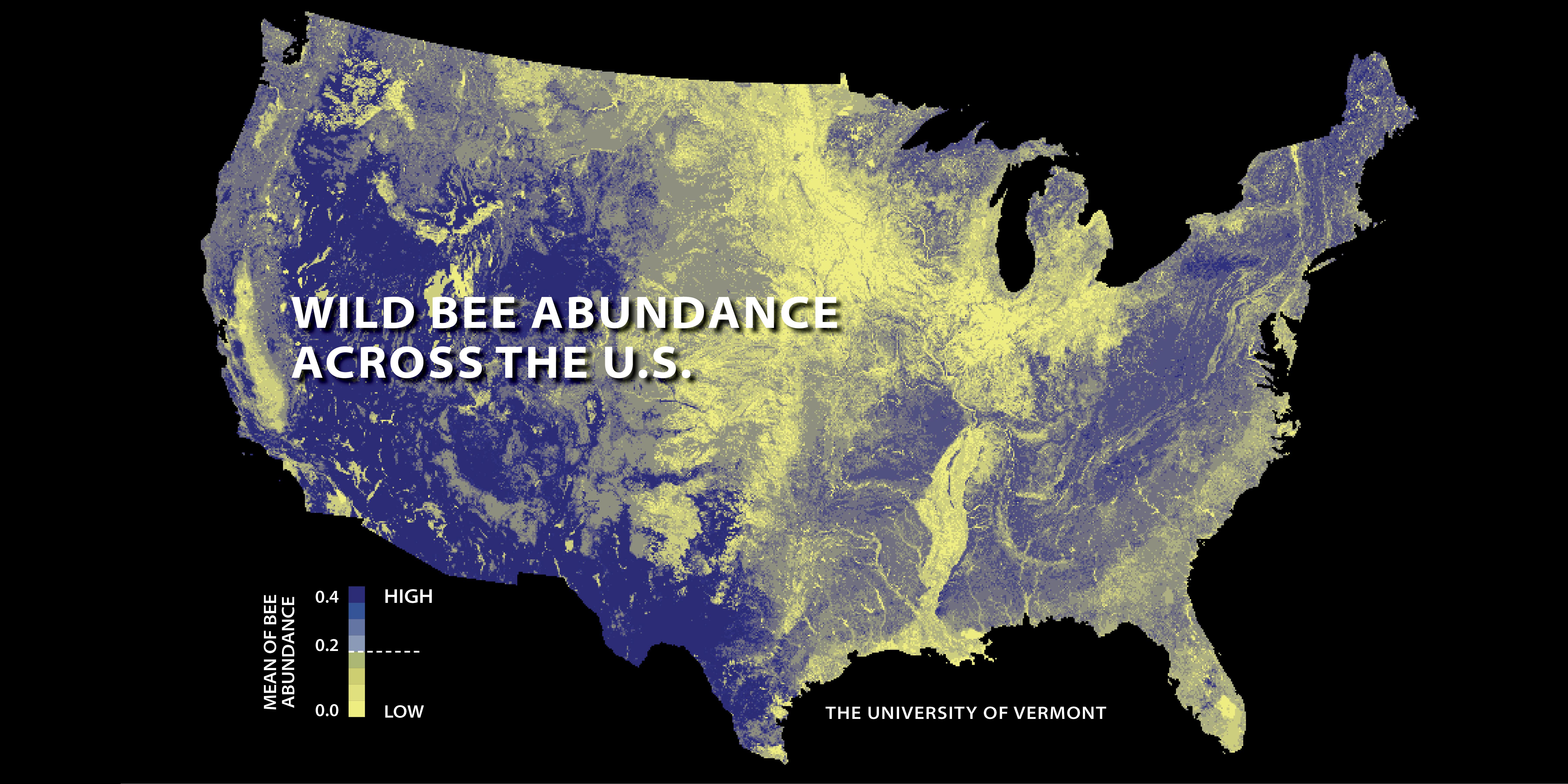 wild-bee-abundance-across-the-us_23525455359_o