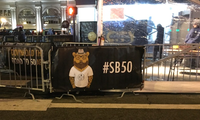 superbowl bear sb50