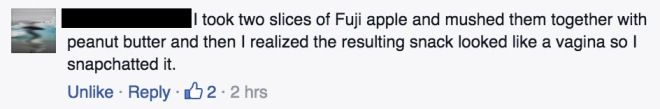 fb_fuji