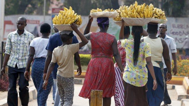 Uganda women carry bananas