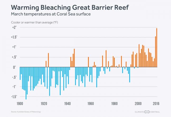 warming bleaching great barrier reef