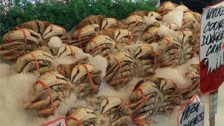Dungeness crabs for sale in Seattle.