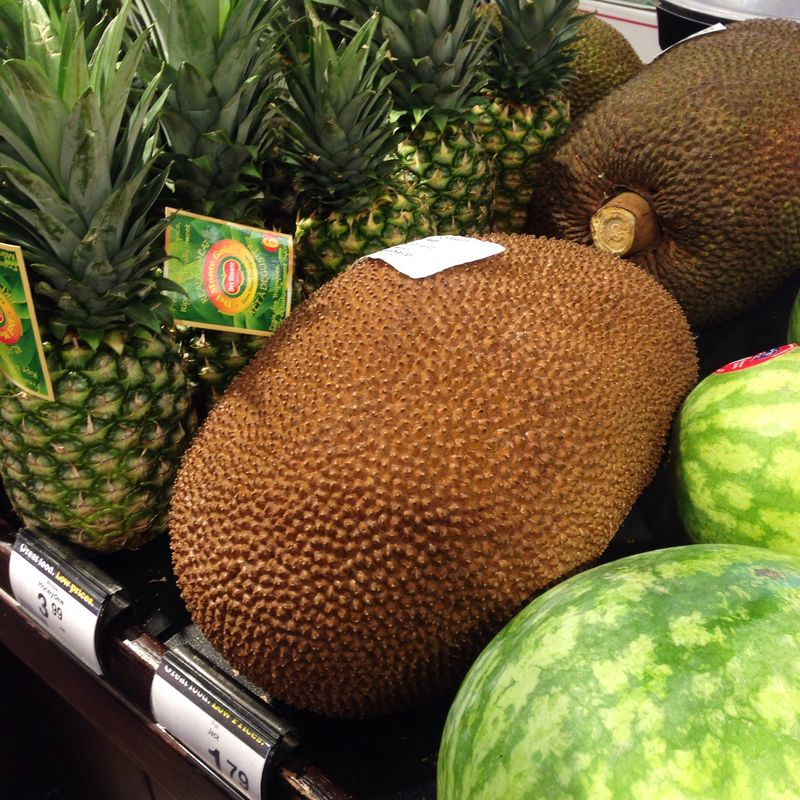 A very ripe jackfruit, spotted at my local grocery store.