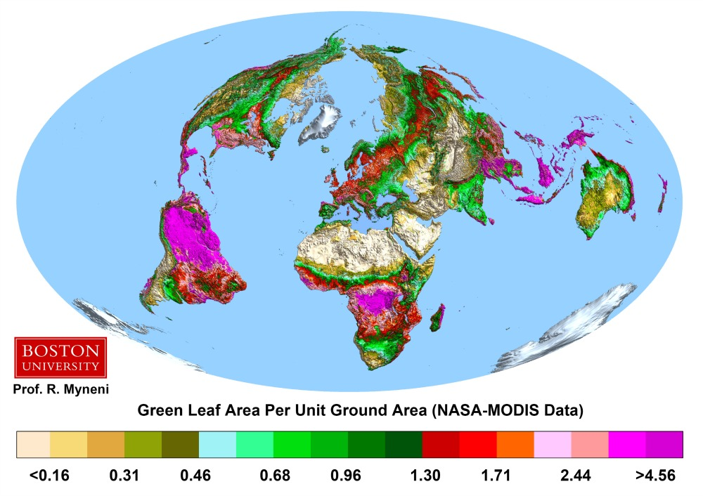Map showing vegetation across the globe.