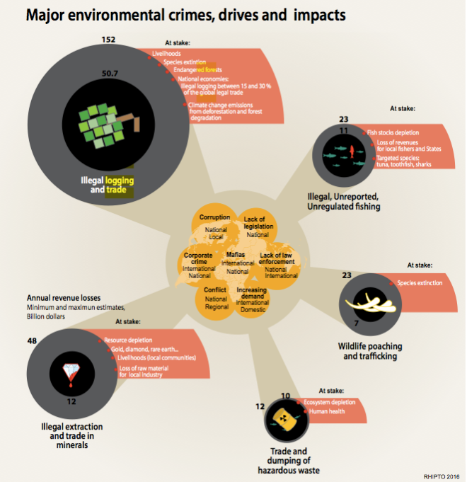 Major Environmental Crimes