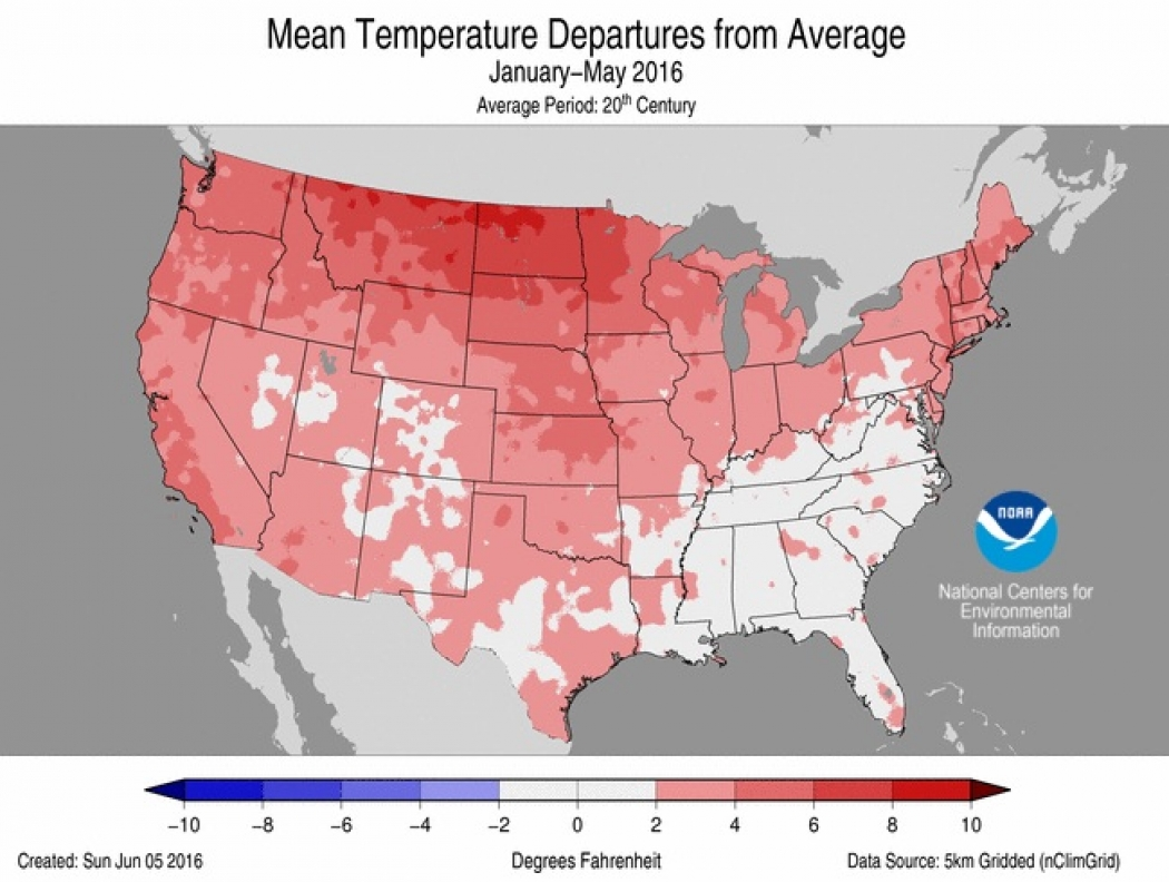 Year-to-date temperature anomalies across the contiguous U.S.