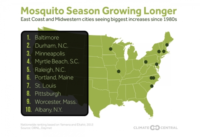 mosquito chart