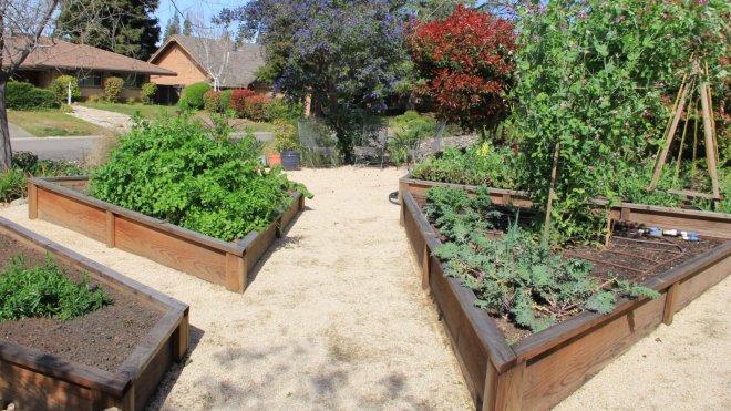 Karrie Reid's front yard garden